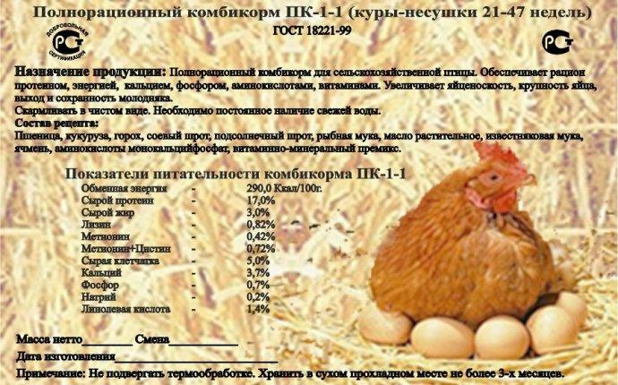 Комбикорм ПК (1, 2, 5) - состав и виды