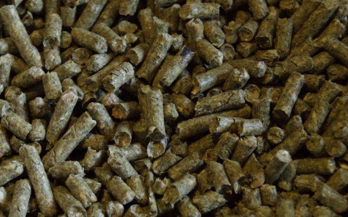 Комбикорм в гранулах в домашних условиях — Вся Калабрия