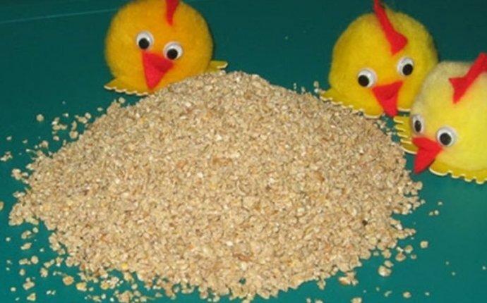 Отруби, комбикорма, зерно - Товары для животных